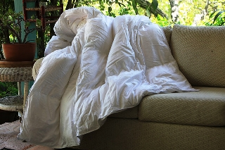 Mulberry Silk Comforters
